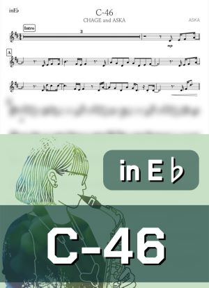 C462599