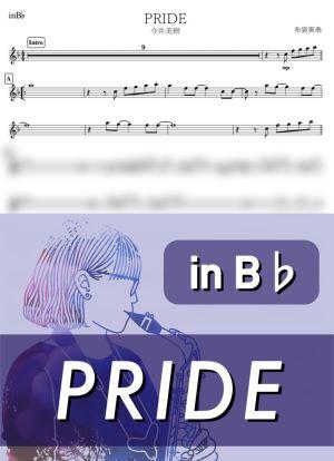 Prideb2599