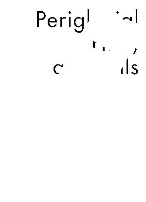 Rpp0055