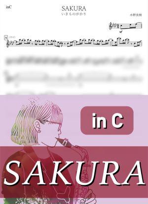 Sakurac2599