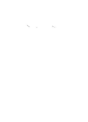 Chura 005