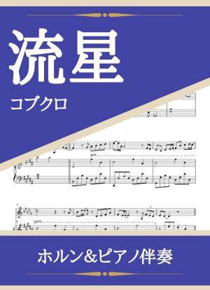 Ryuusei11