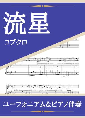 Ryuusei13