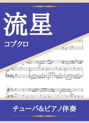 Ryuusei14