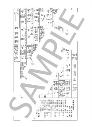Sagami0118
