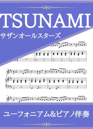 Tsunami13