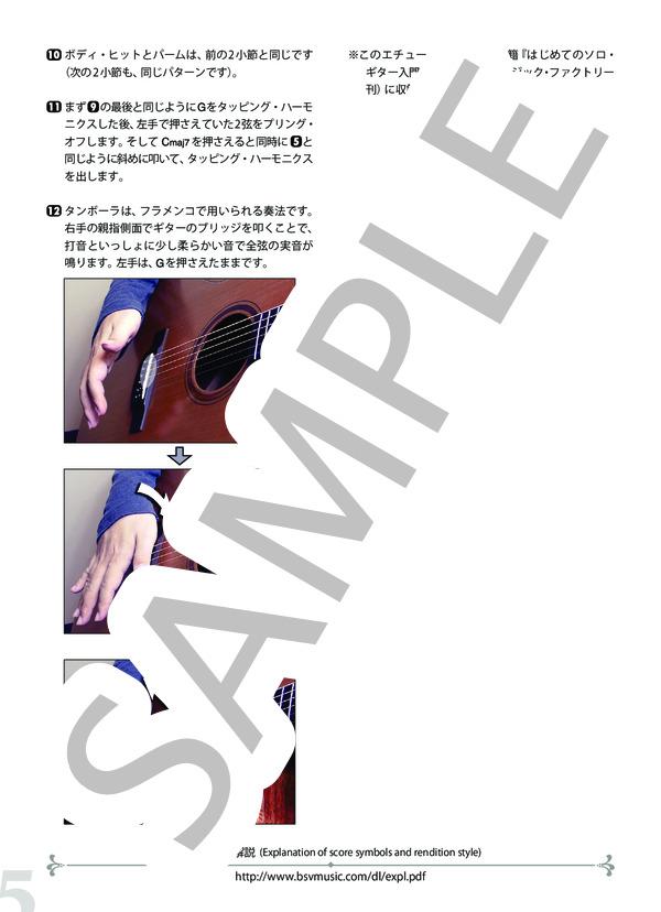 Bsvd 9811n 5