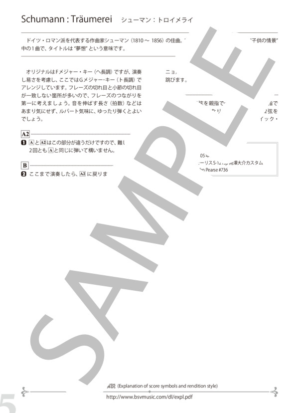 Bsvd7019n 5