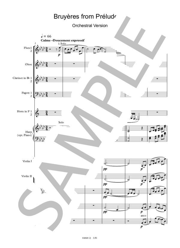 Debussy bruyeres orchestra 1