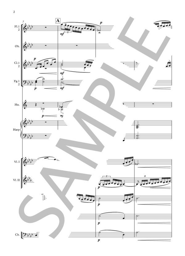 Debussy bruyeres orchestra 2