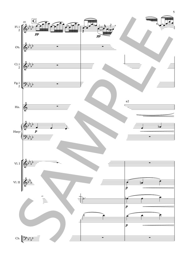Debussy bruyeres orchestra 5